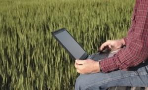 agricoltore-computer-campo-di-grano-anziano-pc
